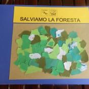 SALVIAMO LA FORESTA